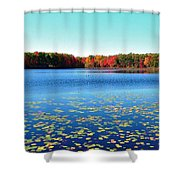 Vivid Fall Colors Shower Curtain