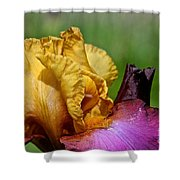 Vivid June Shower Curtain