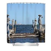 Vizcaya - The Pier Shower Curtain