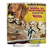 Vizsla Art Canvas Print - North By Northwest Movie Poster Shower Curtain