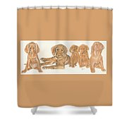 Vizsla Puppies Shower Curtain
