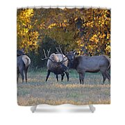 Vocalization Shower Curtain