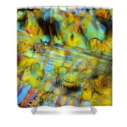 Volcanic Glass Shower Curtain