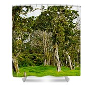 Volcano Ranch Shower Curtain