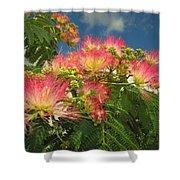 Voluntary Mimosa Tree Shower Curtain