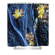 Wachlella Falls Detail Columbia River Gorge Shower Curtain