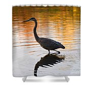 Wading For You Shower Curtain