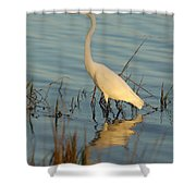 Wading The Pond Shower Curtain