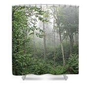Waft Of Mist - Shenandoah Park Shower Curtain