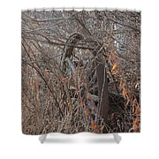 Wagon Wheel_7449 Shower Curtain