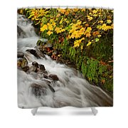 Wahkeena Falls At Columbia River Gorge In The Fall Shower Curtain
