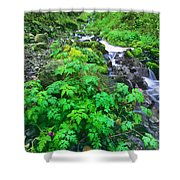 Wahkeena Falls In The Columbia River Gorge Shower Curtain