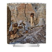 Wahweap Guardian Shower Curtain