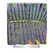 Waikamoi 32 Shower Curtain