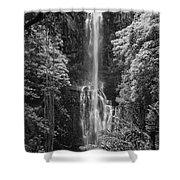 Wailua Falls 2 Shower Curtain
