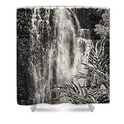 Wailua Waterfall 3 Shower Curtain