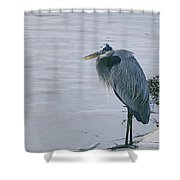 Waiting For A Boat Ride Shower Curtain
