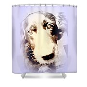 I Have No Voice So Vote For Me Shower Curtain
