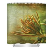 Waiting For Spring 3 Shower Curtain