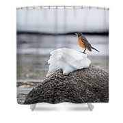 Waiting For Spring Square Shower Curtain