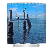 Waiting For Sunset Shower Curtain