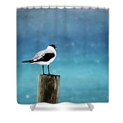 Waiting For The Fishing Boats Shower Curtain
