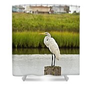 Waiting On Dinner Time Shower Curtain