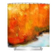 Wake Forest Shower Curtain