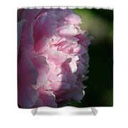 Wake Up Pink Peony Shower Curtain