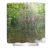 Walden Pond Shower Curtain