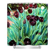 Walk Among The Tulips Shower Curtain