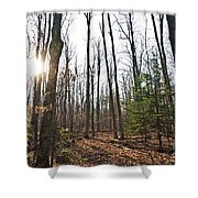 Walk In The Woods2 Shower Curtain