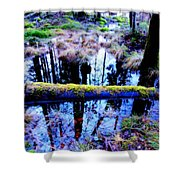 Walk Right Into The Nature's Fairytale With Me  Shower Curtain