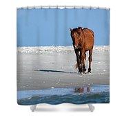 Walk On The Beach Shower Curtain