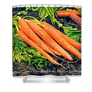 Walk With God - Garden Quote Shower Curtain by Edward Fielding