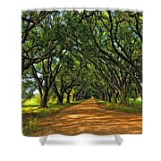 Walk With Me Paint Version Shower Curtain