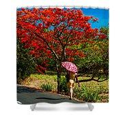 Walking Along The Road. Mauritius Shower Curtain