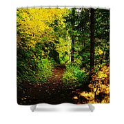 Walking An Autumn Path Shower Curtain