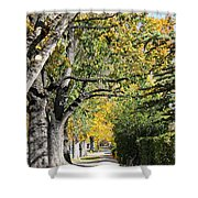 Walking Down Senators Highway Shower Curtain