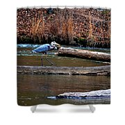 Walking Heron Shower Curtain
