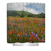 Walking In The Wildflowers Shower Curtain