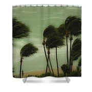 Walking In The Wind Shower Curtain