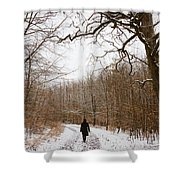 Walking In The Winterly Woodland Shower Curtain by Matthias Hauser