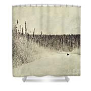 Walking Luna Shower Curtain