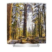 Walking Small In The Tall Forest Shower Curtain