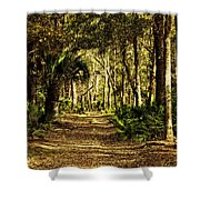 Walking The Bluff Artistic Shower Curtain