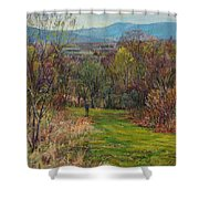 Walking Through The Woods In Spring Shower Curtain
