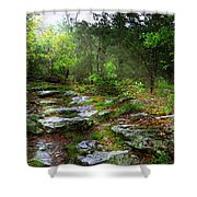 Walking With Light Shower Curtain
