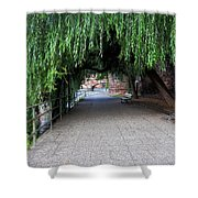 Walkway By The River Shower Curtain