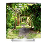 Walkway Shower Curtain by Carey Chen